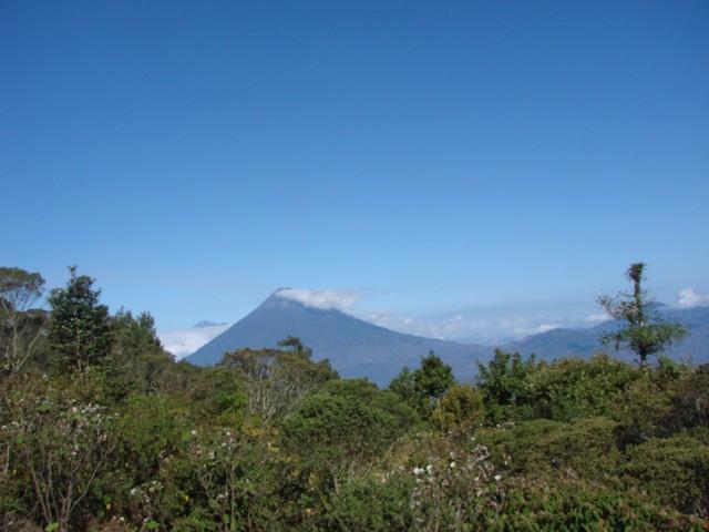 HikeupPacaya5