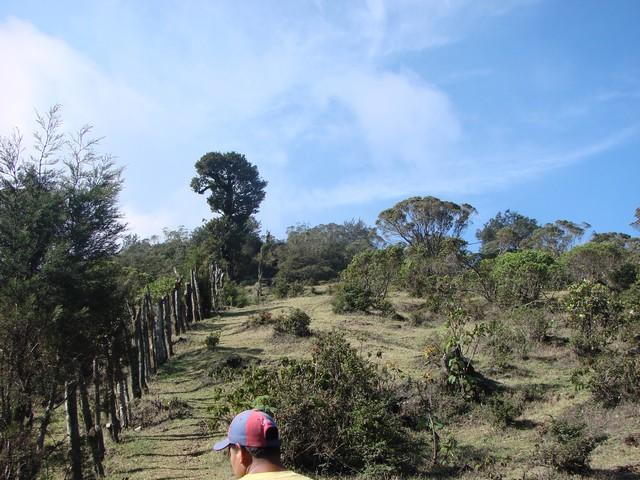 HikeupPacaya6