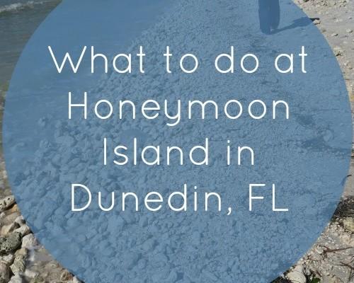 Honeymoon Island State Park in Dunedin, Florida