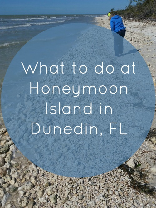 What to do at Honeymoon Island